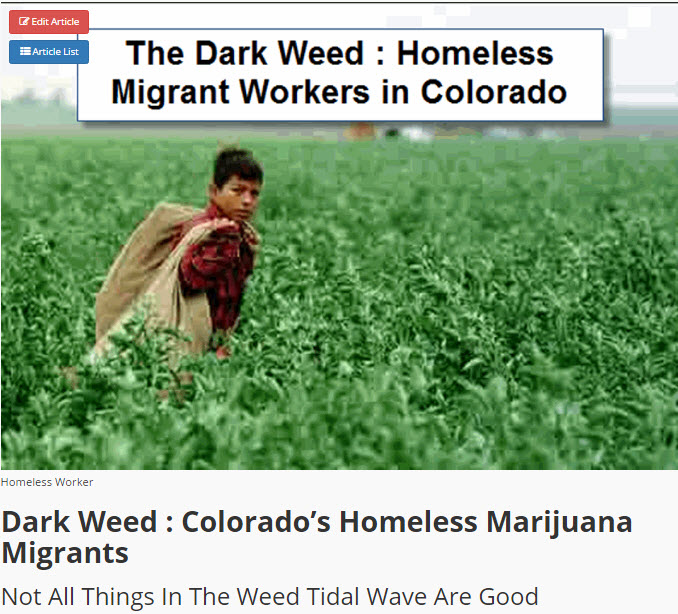 MIGRANT WORKERS IN CANNABIS