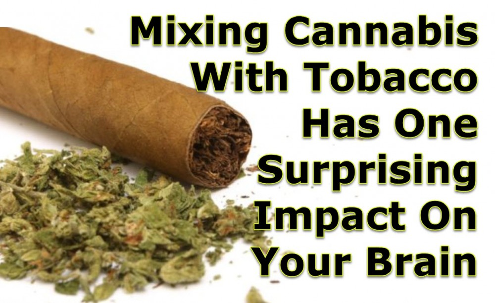 MIXING CANNBIS WITH TOBACCO