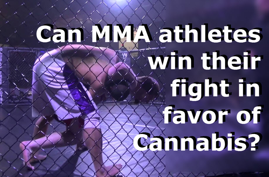 High Rollerz - Weed Meets Jiu-Jitsu