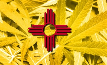 NEW MEXICO WEED