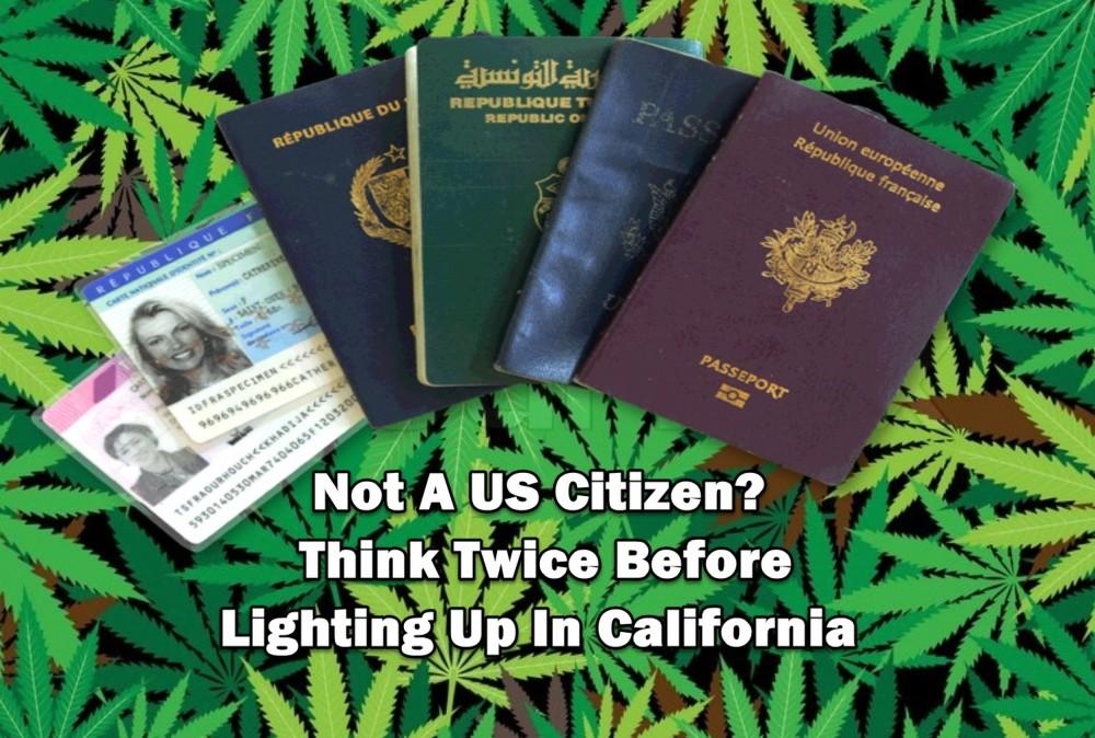 non us citizens cannabis