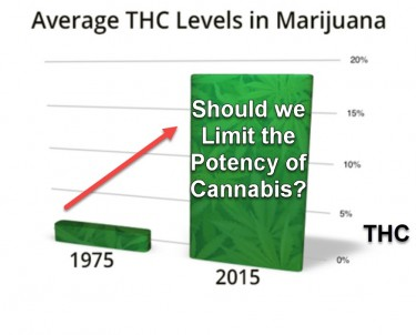 POTENCY OF CANNABIS LIMITS
