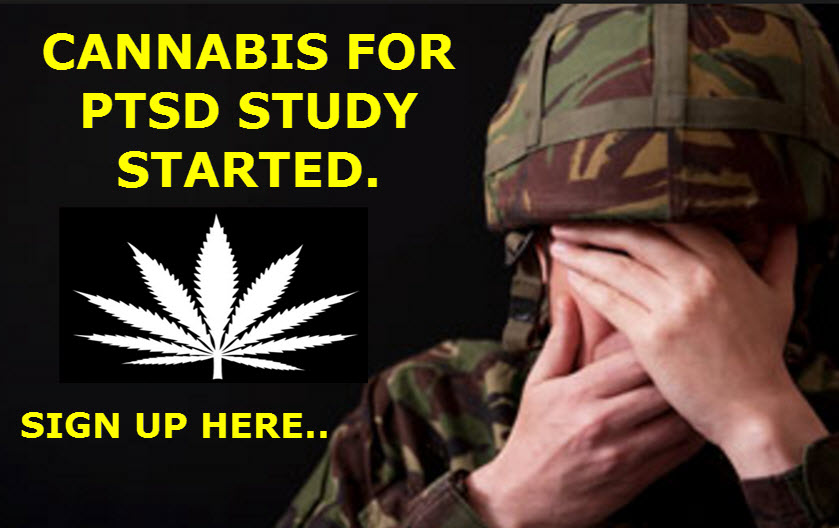 PTSD STUDY ON CANNABIS