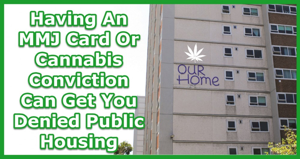MEDICAL MARIJUANA CARD IN PUBLIC HOUSING