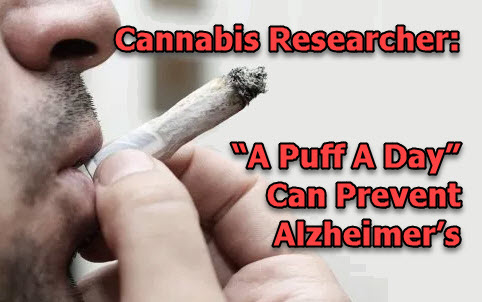 SMOKING CANNABIS TO PREVENT ALZHIEMERS