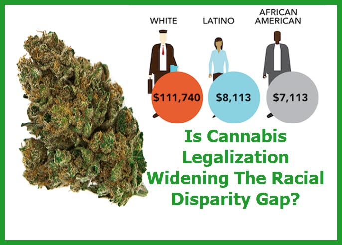 CANNABIS RACIAL BUSINESS OWNERSHIP