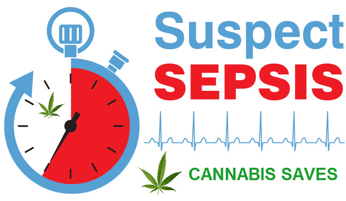 SEPSIS CANNABIS TREATMENT