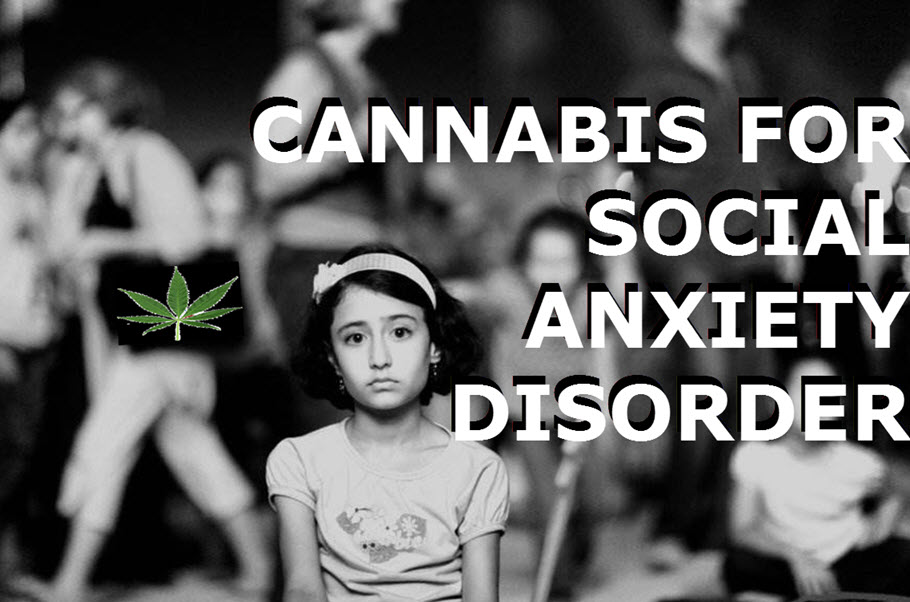CANNABIS FOR SOCIAL ANXIETY DISORDERS