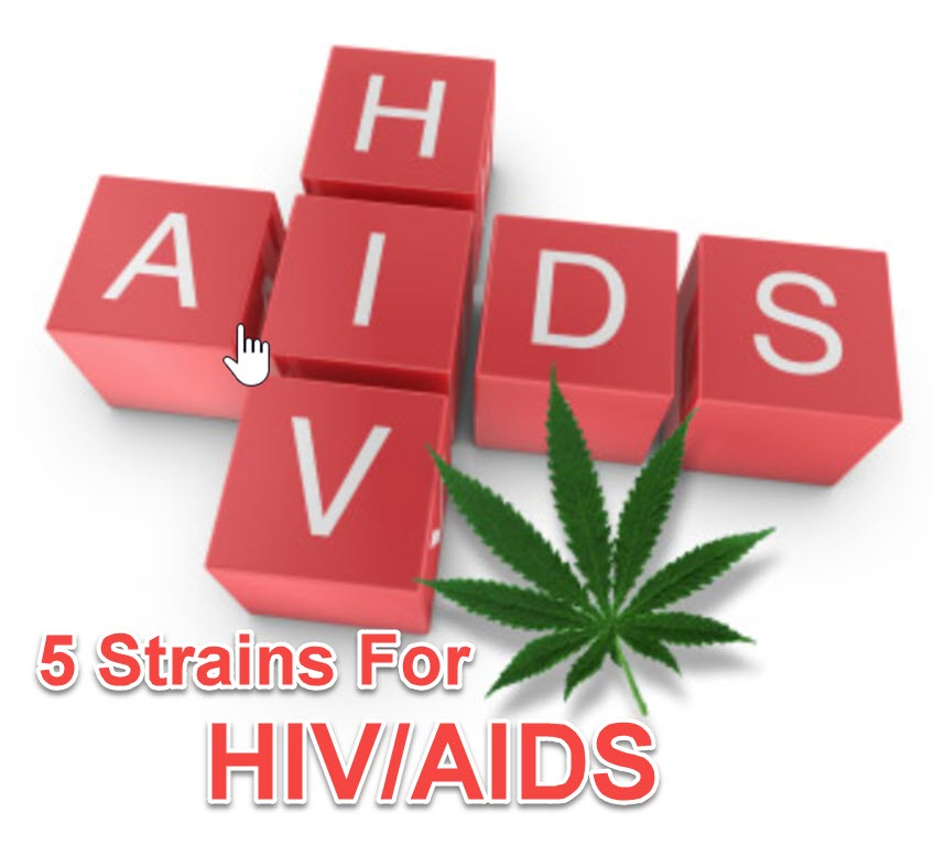cannabis for HIV/aids