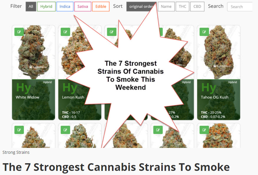 strongest cannabis strains