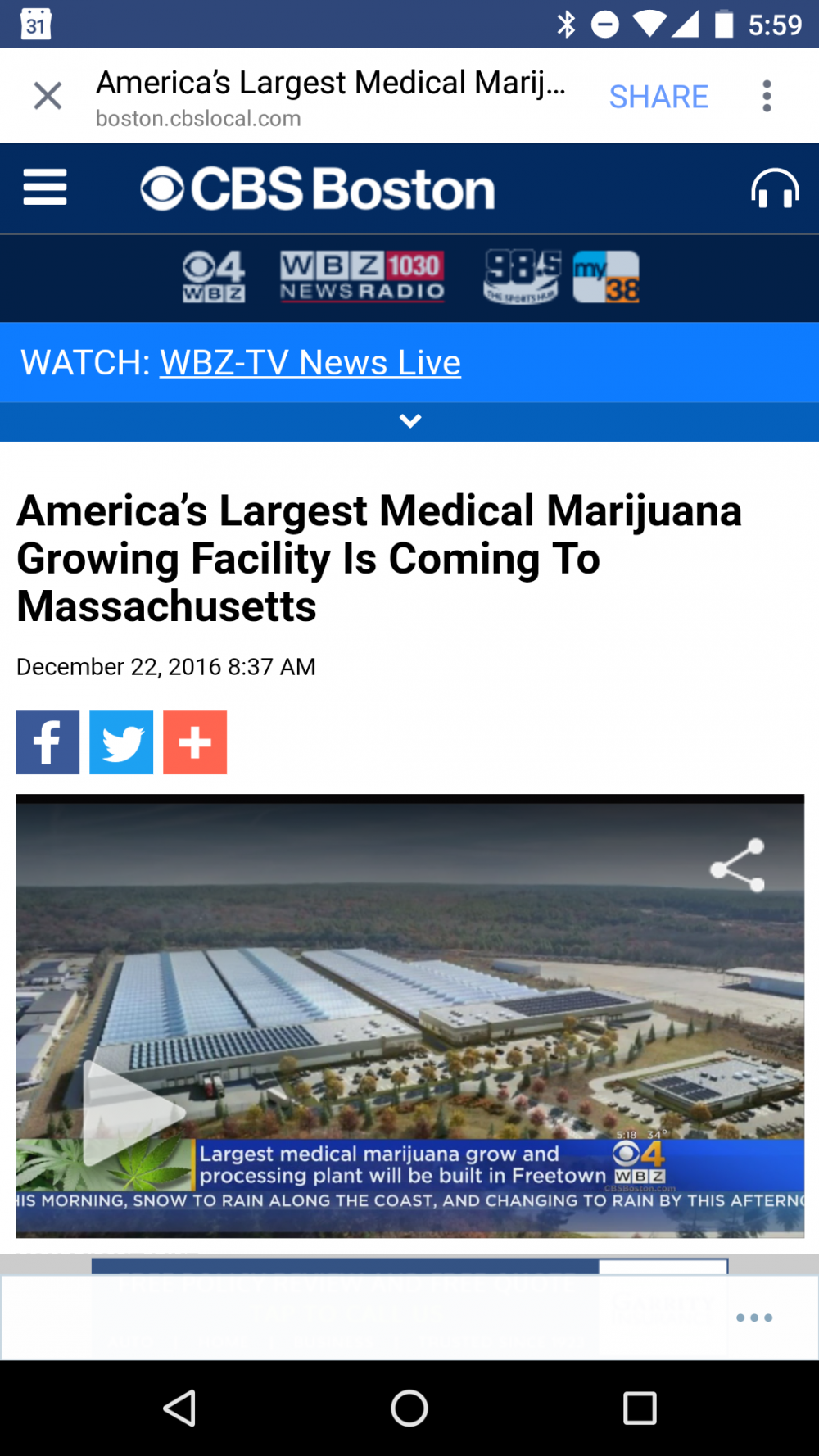 marijuana grow facility in massachusetts
