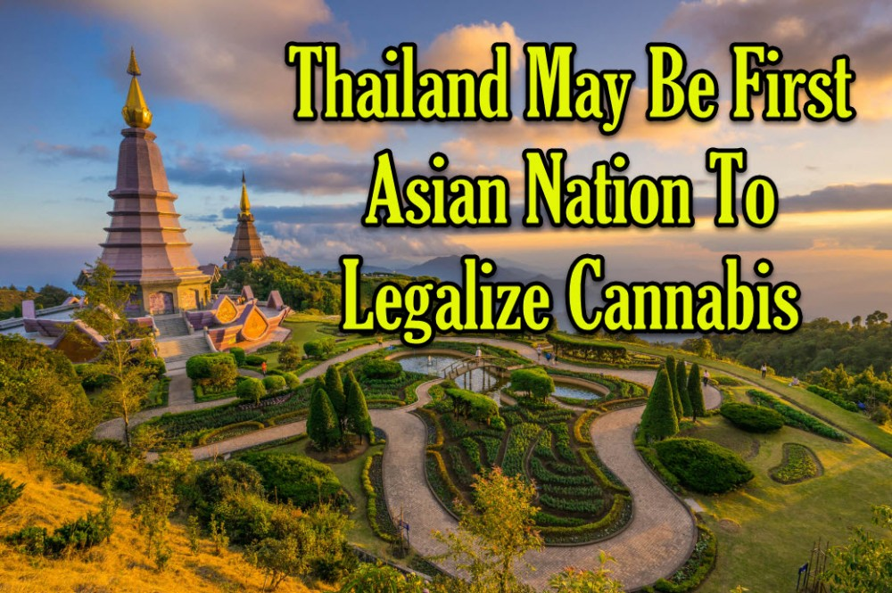 THAILAND LEGALIZES WEED