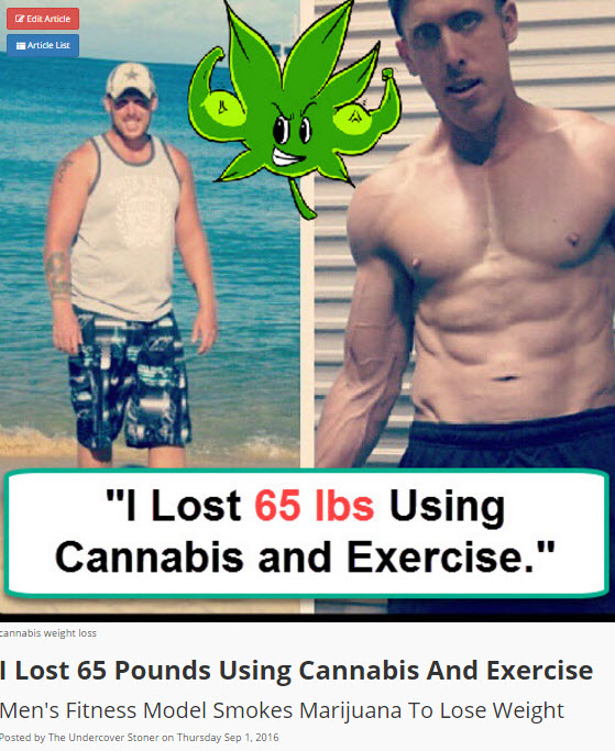 CANNABIS DIET AND EXERCISE