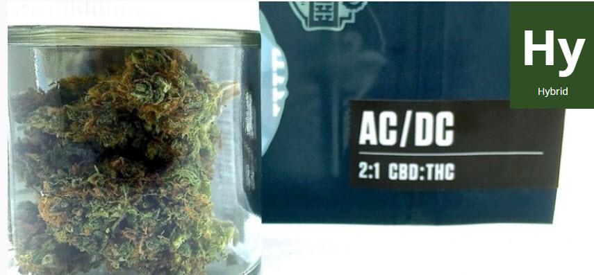acdc kush strain