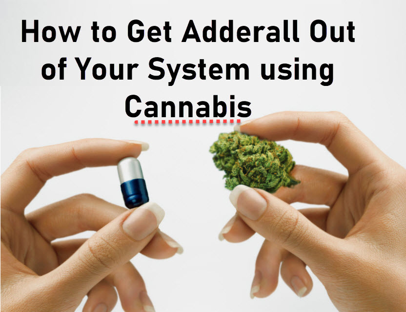 GETTING OFF ADDERALL WITH MEDICAL MARIJUANA