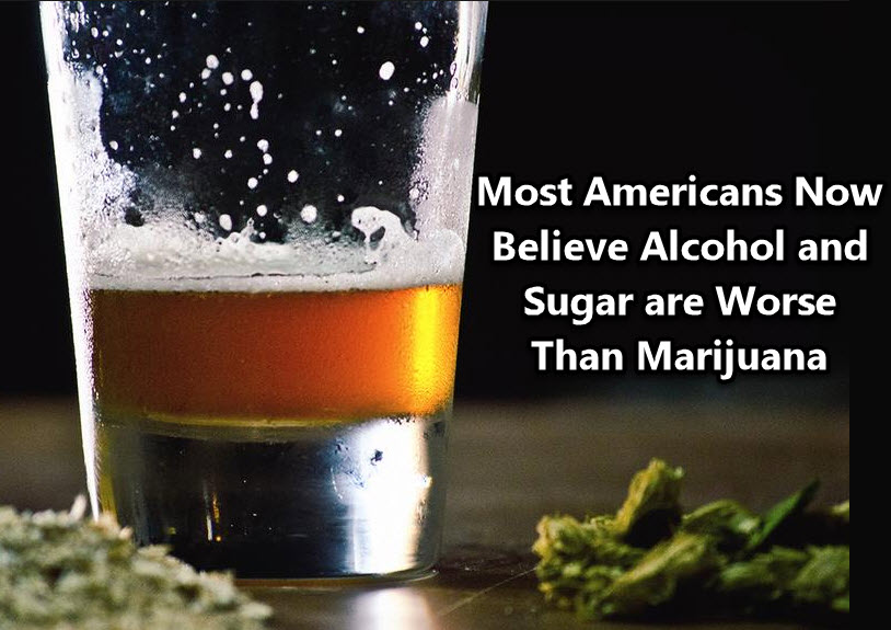 ALCOHOL POLL VERSE CANNABIS