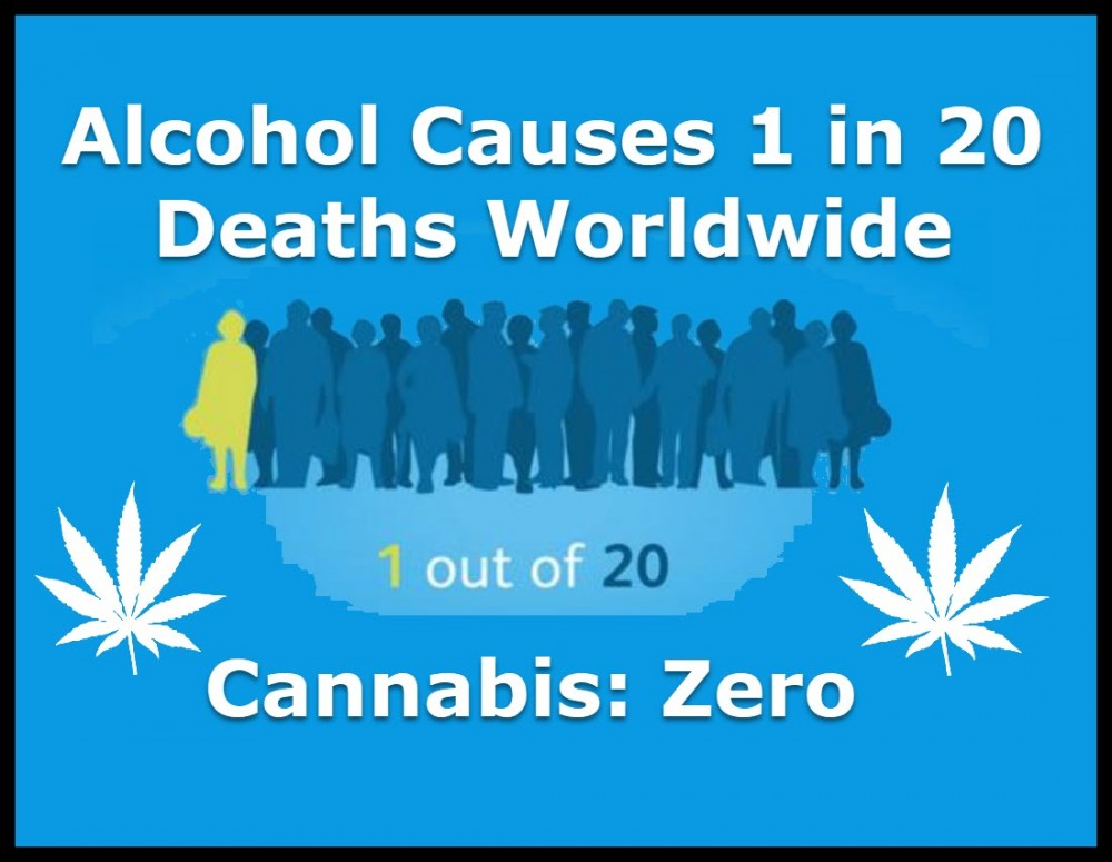 alcohol causes 1 in 20 deaths