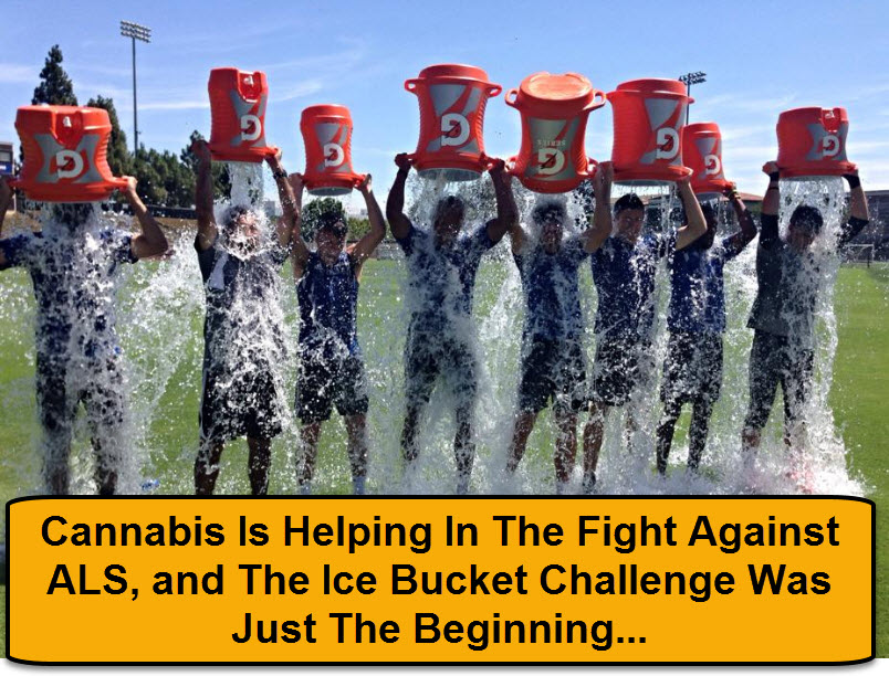 ALS CHALLENGE WITH CANNABIS