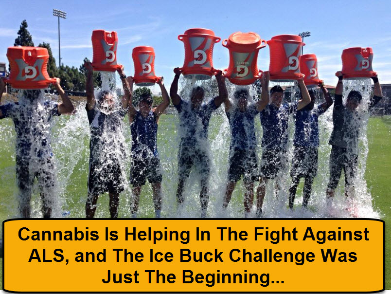 CANNABIS FOR ALS
