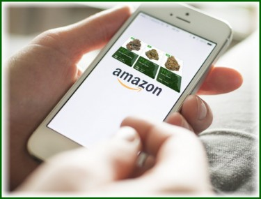 AMAZON FOR MARIJUANA OR JUST WORKERS