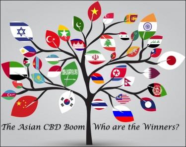 asian cbd market leaders