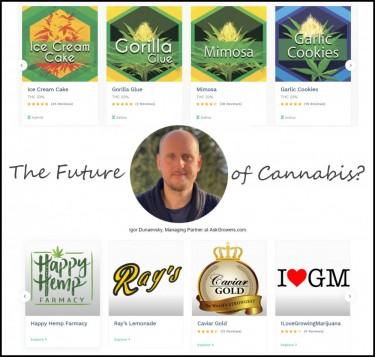 the future of cannabis
