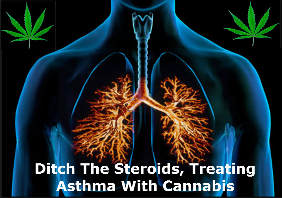 CANNABIS FOR ASTHMA