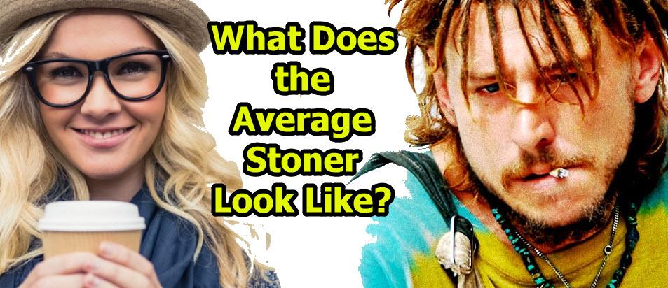 average stoner