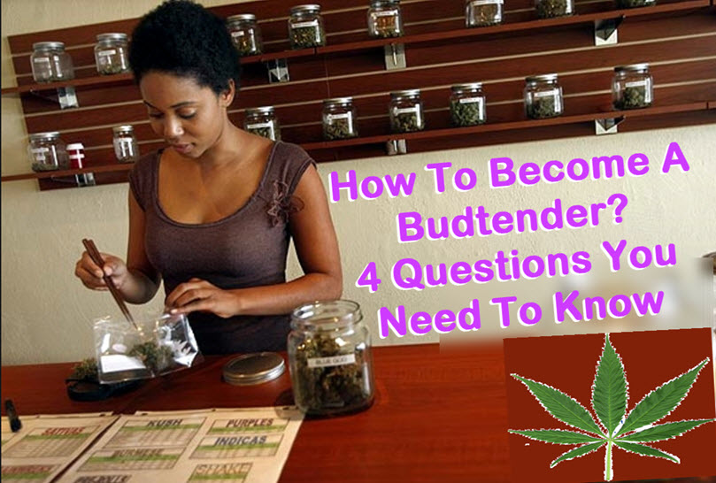 WHATS IT LIKE TO BE A BUDTENDER