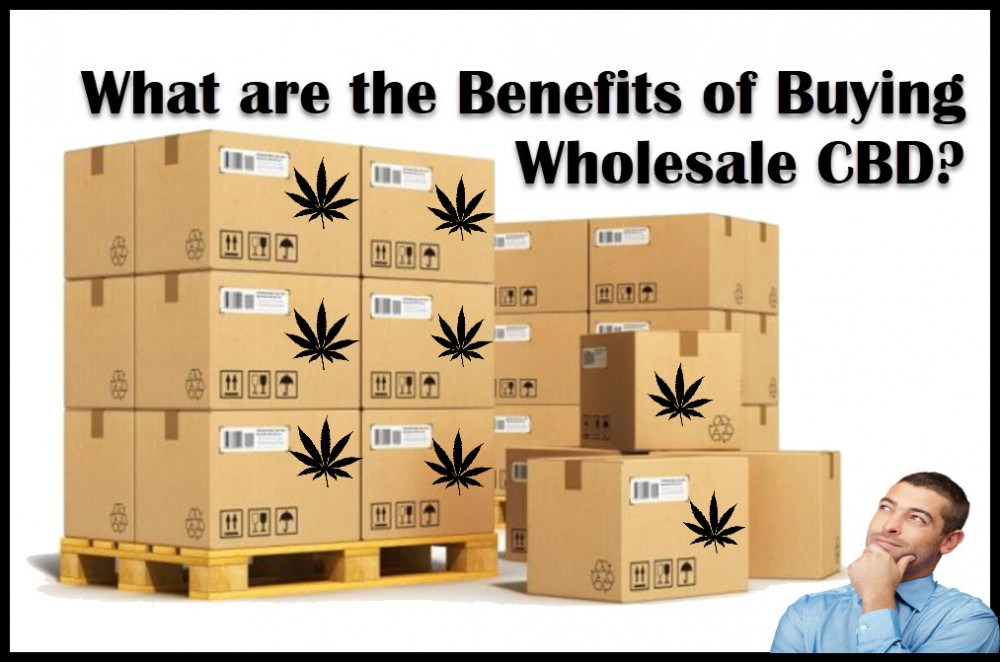 BUYING WHOLESALE CBD IS A GOOD IDEA