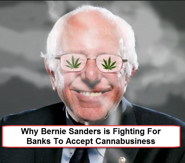 bernie sanders pro marijuana