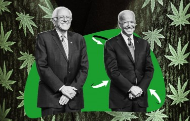 bernie sanders and joe biden talk marijuana