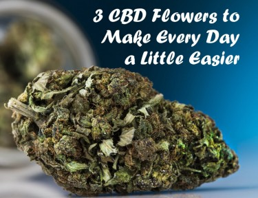 CBD FLOWER STRAINS TO SMOKE