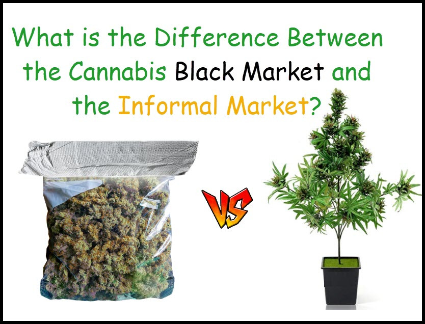 black market cannabis or informal market cananbis