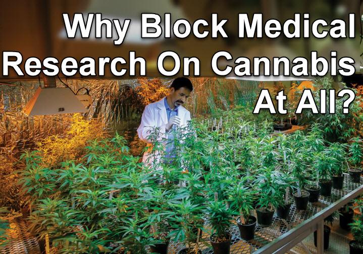block marijuana research