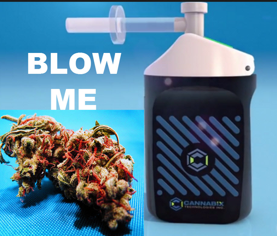 CANNABIS BREATHALIZER