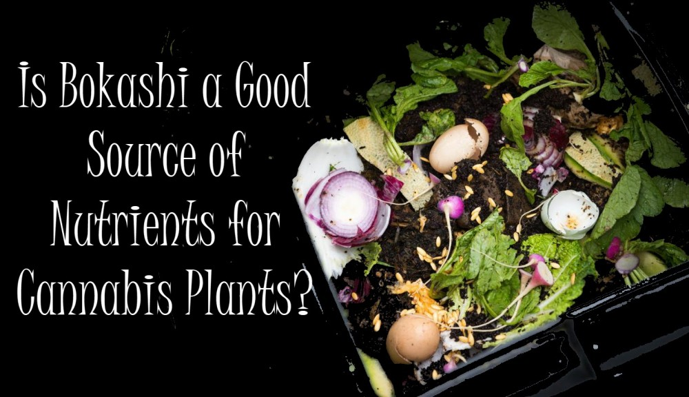 bokashiformarijuanaplants - DIY Kitchen Compost for Your Cannabis Plants?