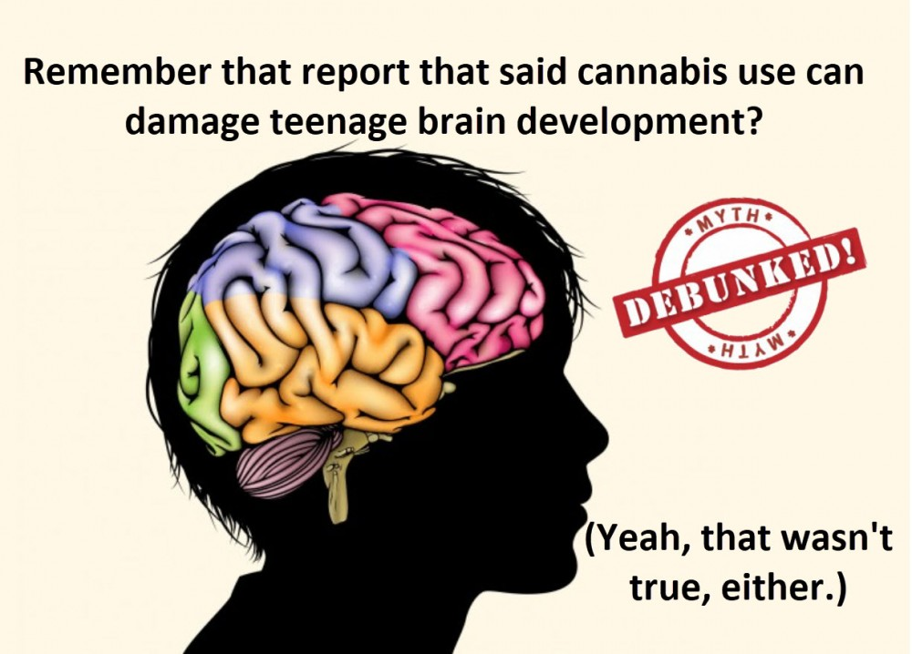 TEEN BRAINS AND MARIJUANA