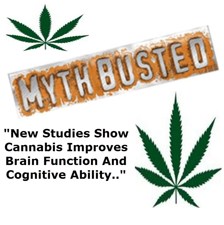 brain activity increases with cannabis