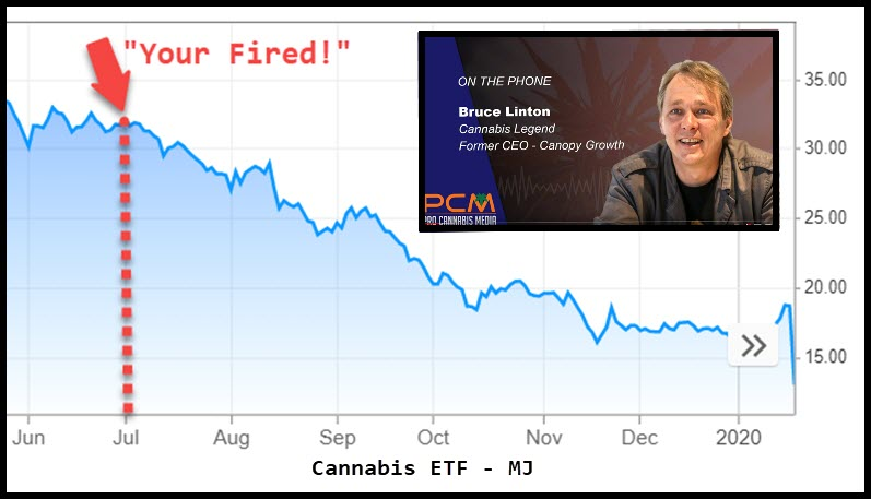 BRUCE LINTON CANNABIS STOCK MARKET CRASH