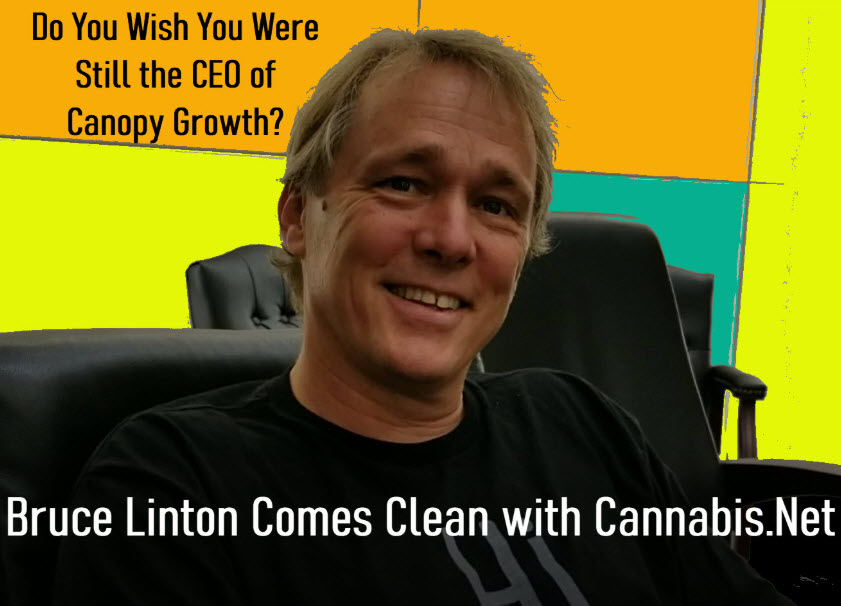 DOES BRUCE LINTON WISH HE WAS STILL CEO OF CANOPY GROWTH
