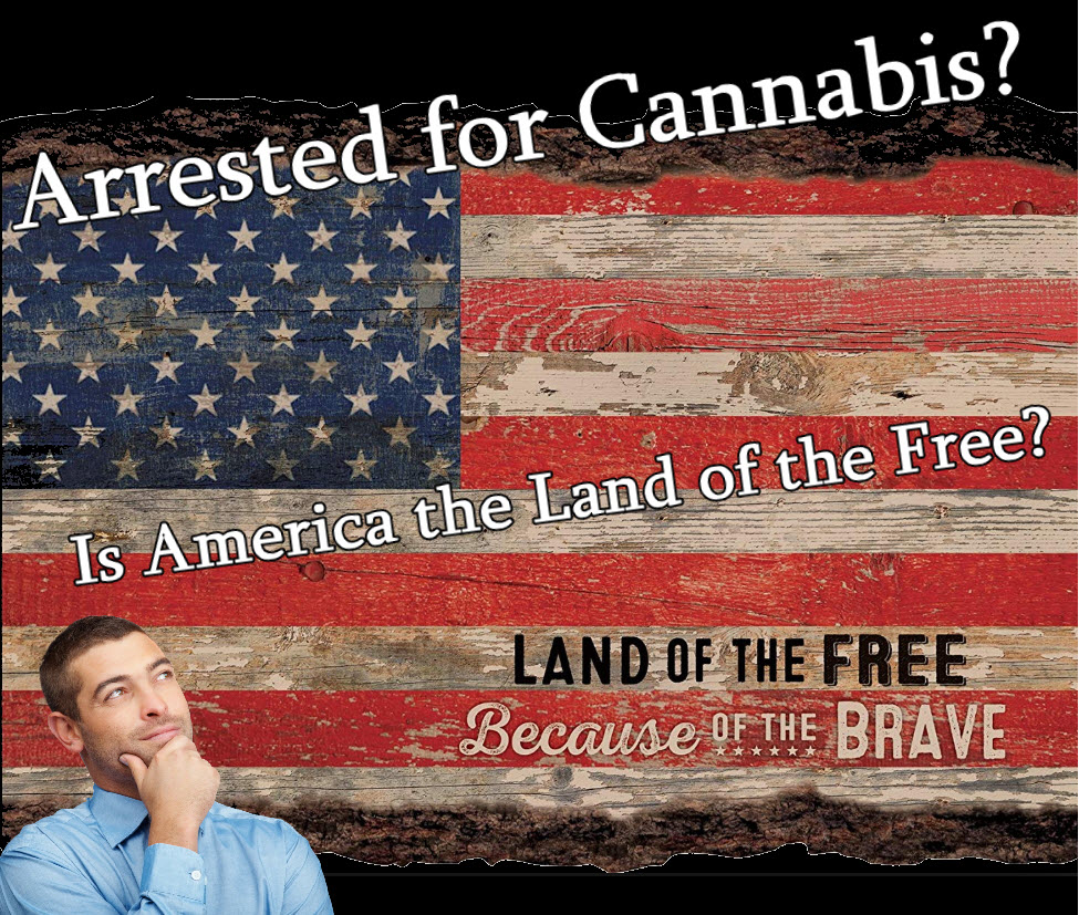 arrested for cannabis in america