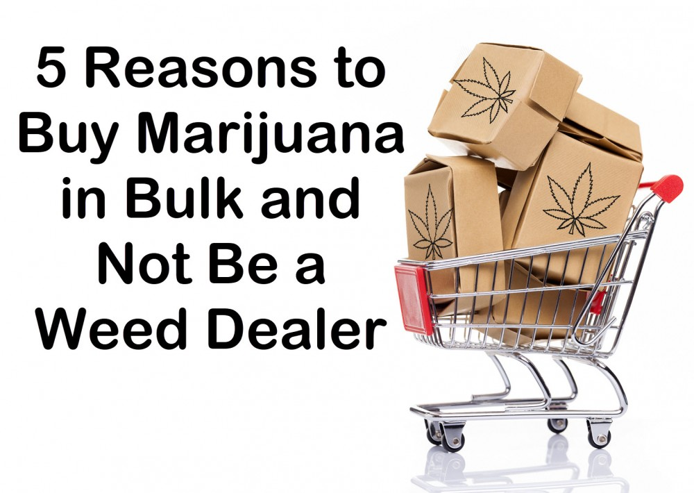 buy marijuana in bulk good idea