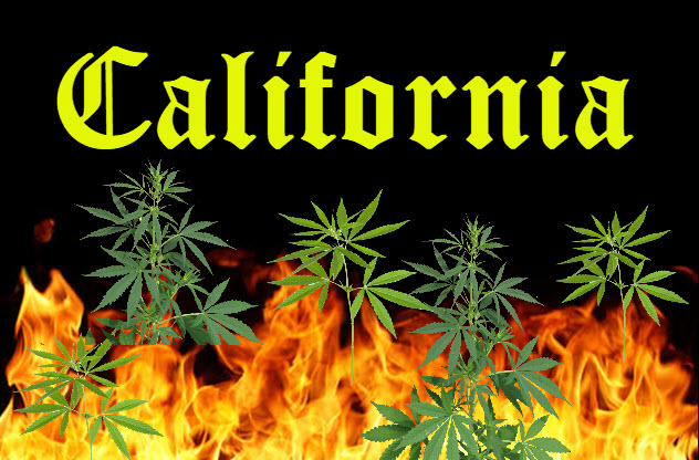 californiawildfiresmarijuana - Cannabis and the California Wildfires