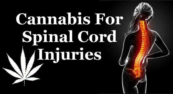 MARIJUANA AND SPINAL INJURIES