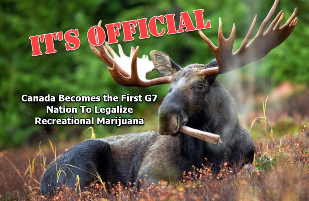CANADIAN G7 CANNABIS LAW