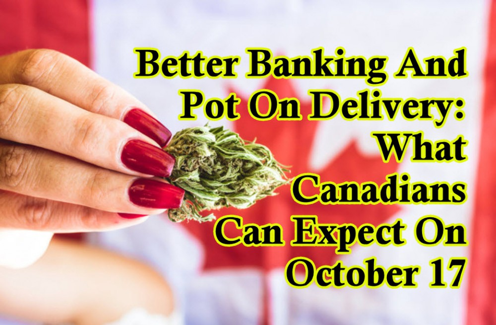 BETTER CANNABIS BANKING IN CANADA