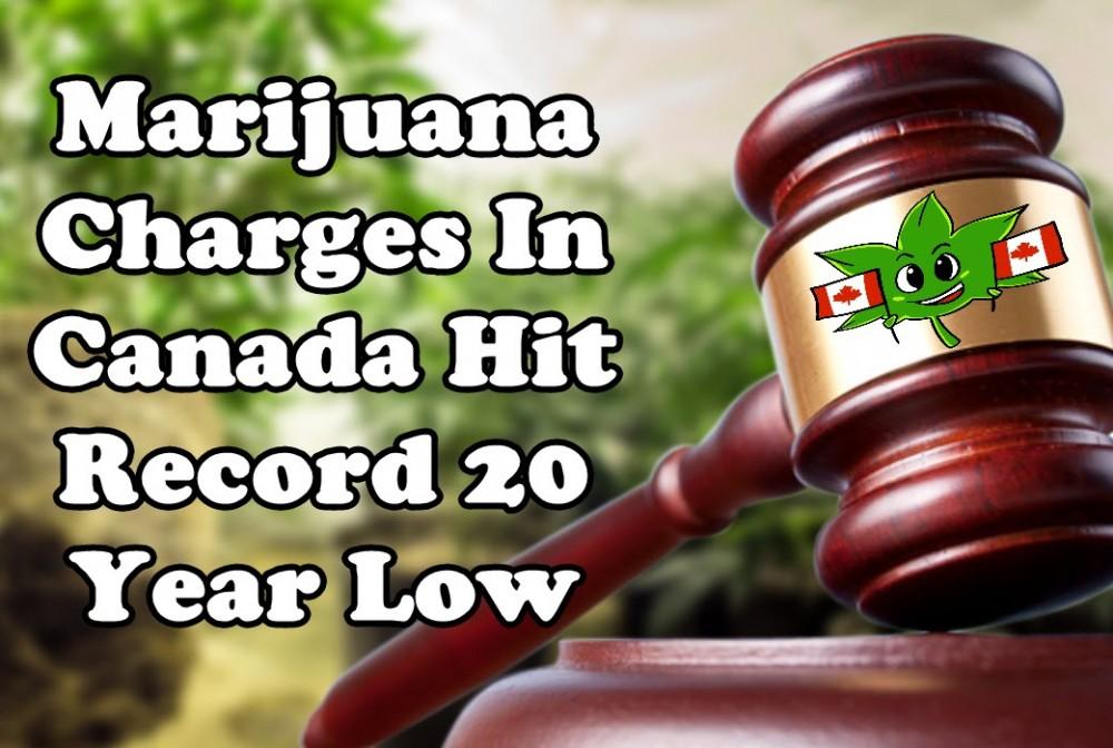 canadian marijuana charges