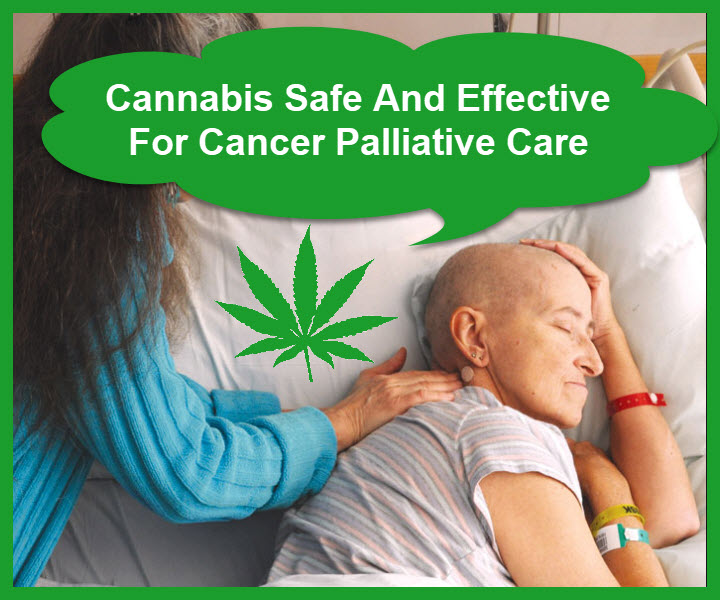 cannabis cancer care
