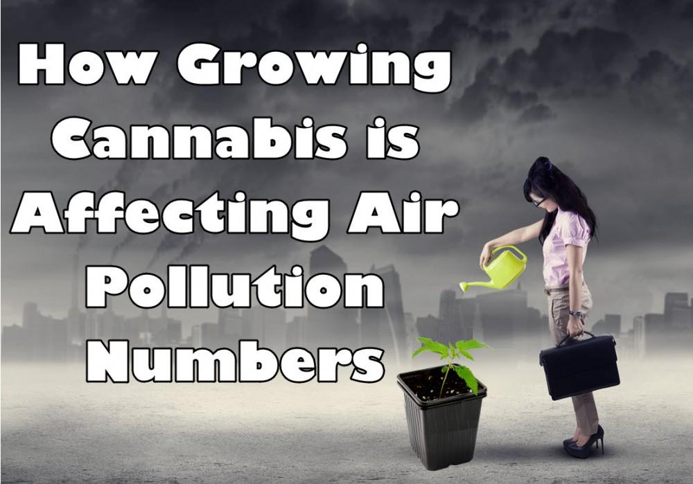 cannabis and air pollution